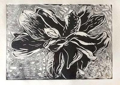 'Flor de magnolio'