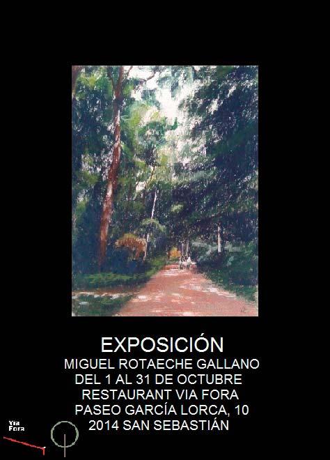 Mikel Rotaeche en Vía Fora de Donostia