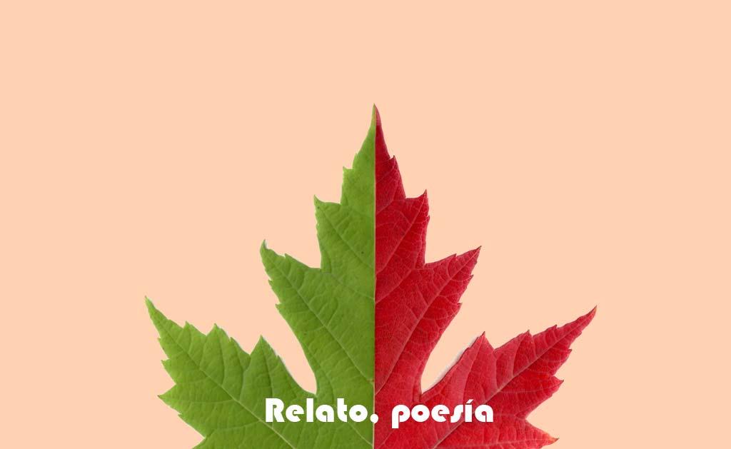 VIII Certamen de relato corto y poesía de la AAG
