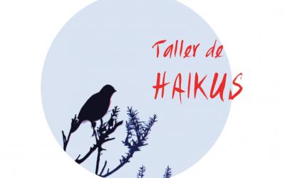 Taller de Haikus en 2014