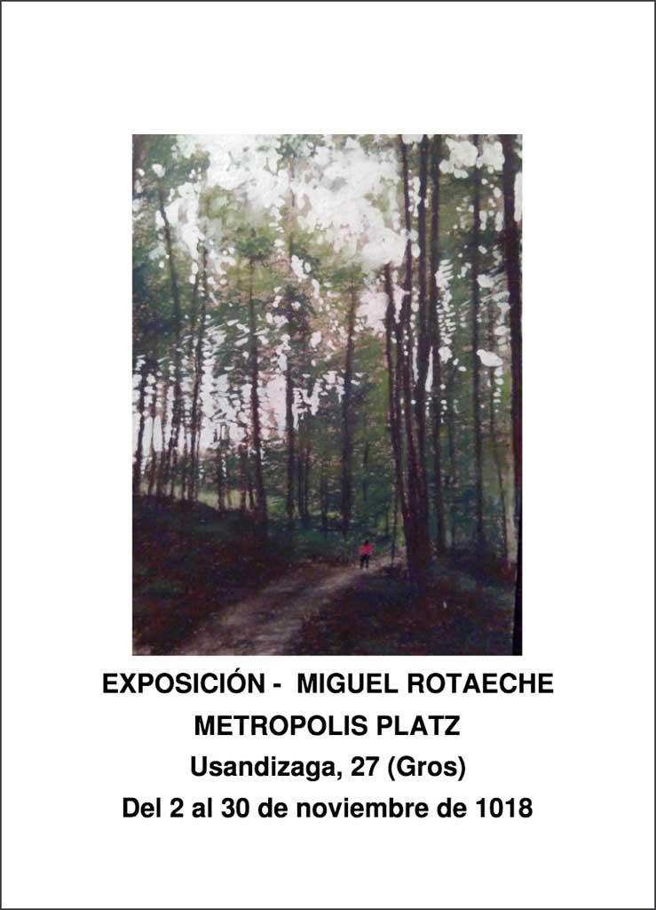 Mikel Rotaaeche exposicion Metropolis platz Donostia