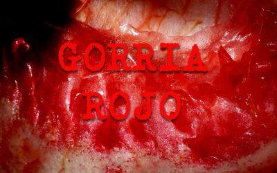 GORRIA – ROJO! La exposición